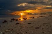 201906 Estero Island-03218.jpg