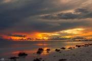 201906 Estero Island-03237.jpg