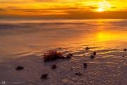 201906 Estero Island -03460.jpg