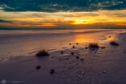 201906 Estero Island -03476.jpg